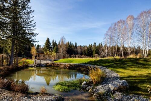 Осень 2020 в Еловый Ручей. Club village Вид на озеро