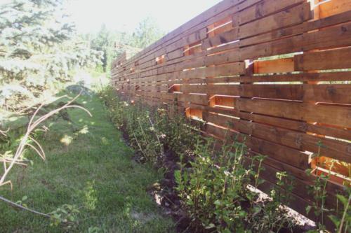 Озеленение в коттеджном поселке Еловый ручей