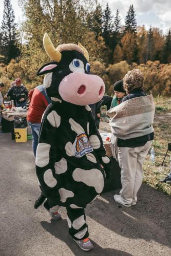 Фестиваль Барбекю в Еловом ручье